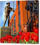 Stan Musial Statue On Opening Day  Canvas Print
