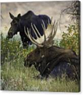 Standing Beside His Majesty Canvas Print