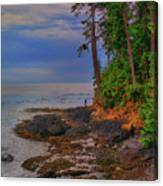 Standing By The Sea Canvas Print