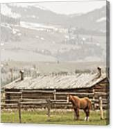 Standing Strong Canvas Print
