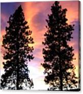 Standing Tall At Sundown Canvas Print