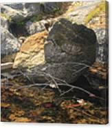 Stanislaus Rocks Spring Canvas Print