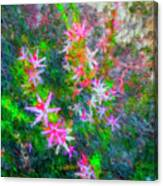 Star Flowers Shine Canvas Print