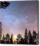 Star Light Star Bright Canvas Print