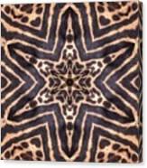 Star Of Cheetah Canvas Print