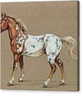 Star Spangled Horse Canvas Print