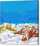 Starfish 1 Canvas Print