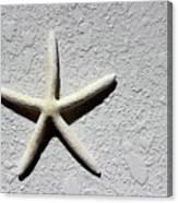 Starfish 2016 Canvas Print