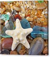 Starfish Art Prints Star Fish Seaglass Sea Glass Canvas Print