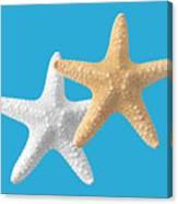 Starfish On Turquoise Canvas Print