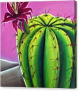 Stargazer Cactus Canvas Print