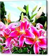 Stargazer Lilies #1 Canvas Print