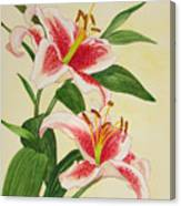 Stargazer Lilies - Watercolor Canvas Print
