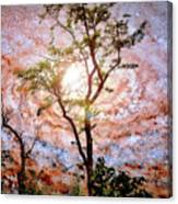 Starry Night Fantasy, Tree Silhouette Canvas Print
