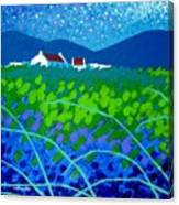 Starry Night In Wicklow Canvas Print