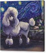 Starry Night Poodle Canvas Print