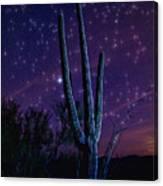 Starry Starry Sonoran Skies  Canvas Print