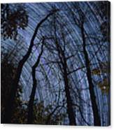 Stars And Silhouettes Canvas Print