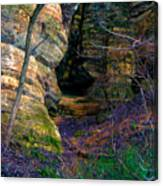 Starved Rock No 2 Canvas Print