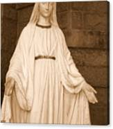 Statue Of Mary At Sacred Heart In Tampa Canvas Print