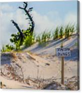 Stay Off Dunes Canvas Print
