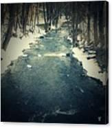 Steady Flow Canvas Print
