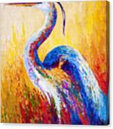 Steady Gaze - Great Blue Heron Canvas Print