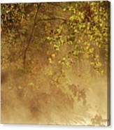 Steam Mist Canvas Print