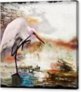 Steath Fighter Canvas Print