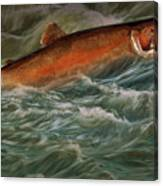 Steelhead Trout Fish No.143 Canvas Print