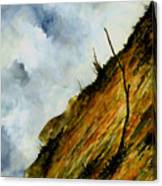Steep Slope Canvas Print