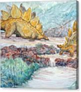 Stego Brook Canvas Print