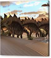 Stegosaurus Dinosaur Canvas Print
