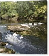 Steinhatchee Falls Canvas Print
