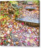 Step Into Fall Canvas Print