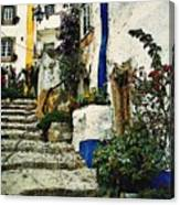 Step Street In Obidos Canvas Print