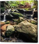 Stepping Cascade - Leura, Blue Mountains, Australia. Canvas Print