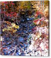 Stepping Stones At Autumn Forest Canvas Print