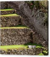 Steps And Terraces Canvas Print
