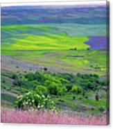 Steptoe Butte Canvas Print
