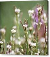 Stick Flower Canvas Print