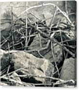 Sticks And Stones 2782 Canvas Print