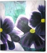 Stiefmuetterchen Canvas Print