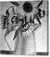 Still Life - 6 Sunflowers In A Jug Canvas Print