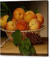 Still Life - Basket Of Peaches Canvas Print