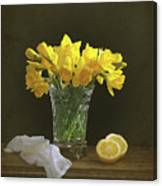 Still Life Daffodils Canvas Print