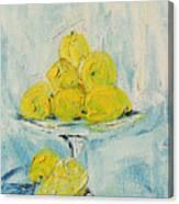 Still Life - Lemons Canvas Print