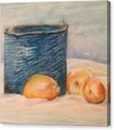 Still Life Number 1 Canvas Print