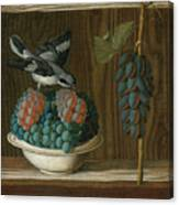 Still Life Of Grapes With A Gray Shrike Canvas Print