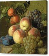 Still Life Of Peaches  Grapes And Plums On A Stone Ledge With A Bird And Butterfly Canvas Print